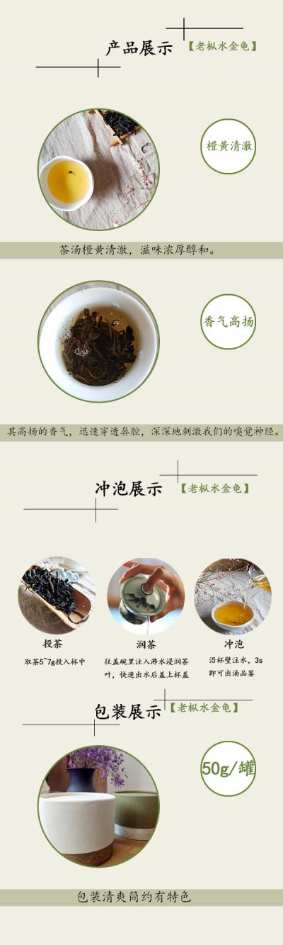 老枞水金龟2